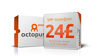 VOIP TELEPHONY FOR 24£
